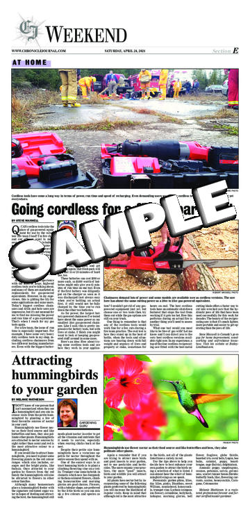 The Chronicle-Journal - Saturday, April 24, 2021 - E-01 ...
